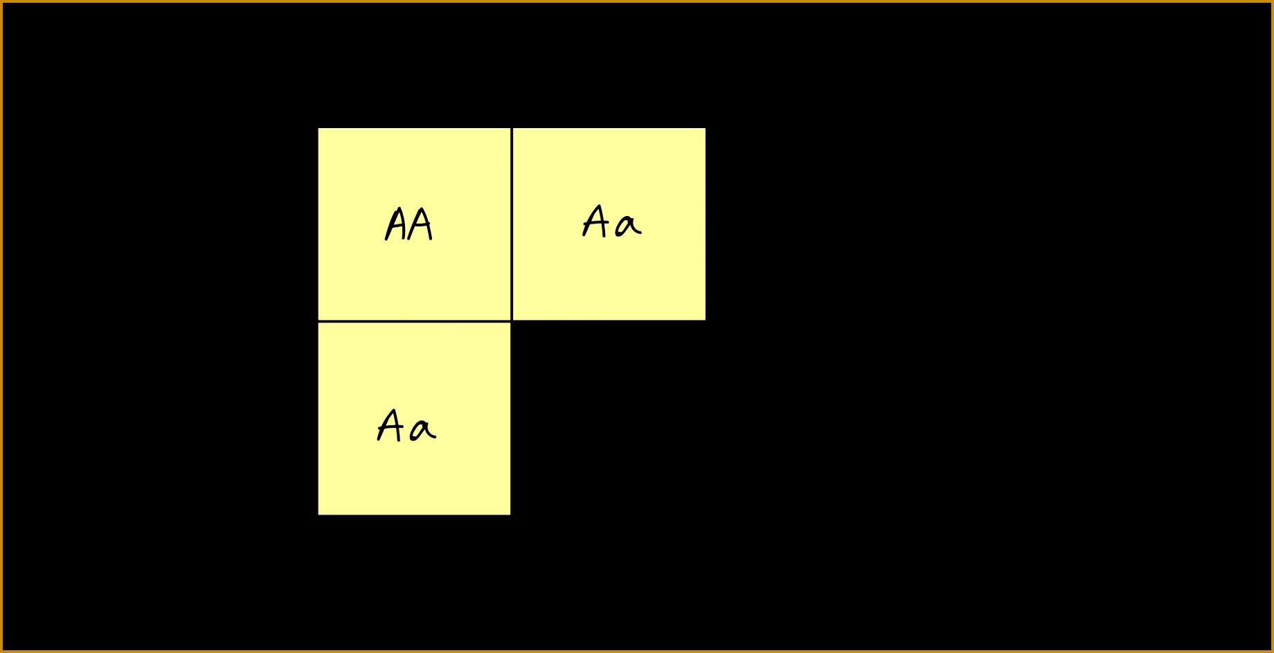 5 Monohybrid Cross Worksheet
