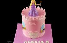 Princess / Fairies / Castle Cakes