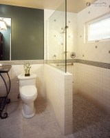 Wonderful Designs for Small Bathrooms with Shower
