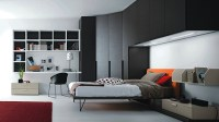 Teenage Boys Bedroom Design Ideas