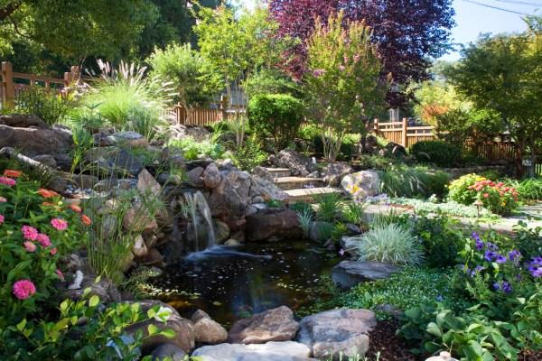 beautiful garden pond waterfalls