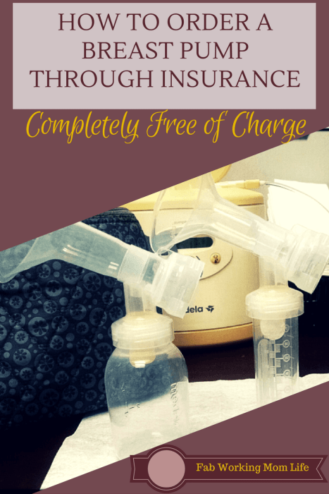 How to Order a Breast Pump through Insurance. Learn how to get your pump FOR FREE with this amazing service!