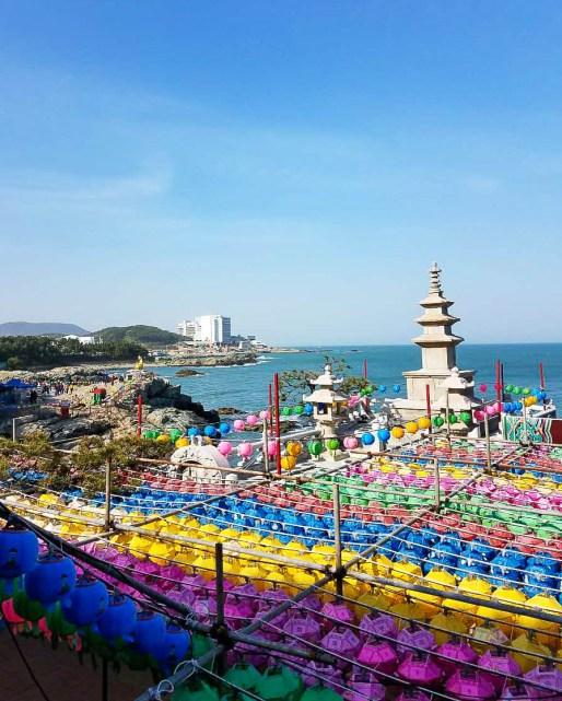 South korean-15