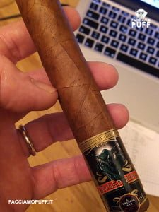 EITC-wicked-indie-robusto