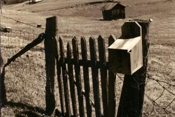 Banche e sicurezza: un binomio necessario