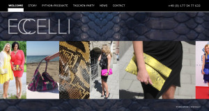 Corporate-Design-Webdesign-ECCELLI