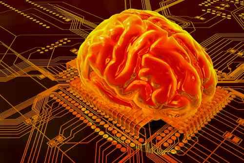 Что такое идеальное топливо для мозга - Женские тайны f3aef3b82d1