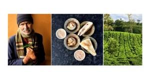 Faces Places and Plates Blog, India, South India, Nilgiri Hills, Ooty, Tamil Nadu, Food Travel, Food Tourism, Indian Food, Culinary Tours, Tea Plantation, Tea, Chai, Chai tea, Tea leaves, Baking, Tea Gardens, Tea Tasting, Tea Tour, Tea Factory, Tea time, Karen Anderson, Pauli-Ann Carriere