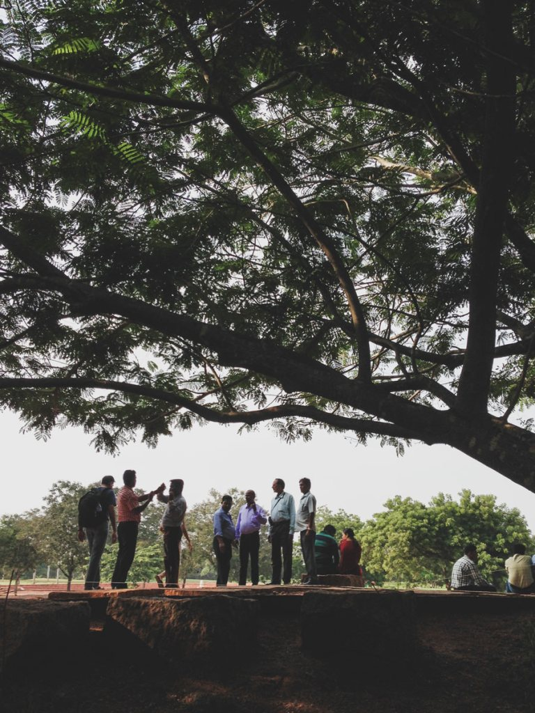 A crowd gathers under the shade of trees to observe the Matrimandir in Auroville.