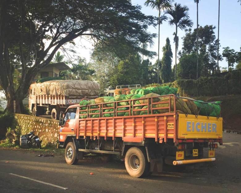 Tea-delivery-trucks_Wayanad