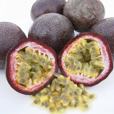 Image of Passiflora edulis 'Black Passionfruit'