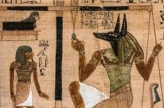 Representation of Anubi