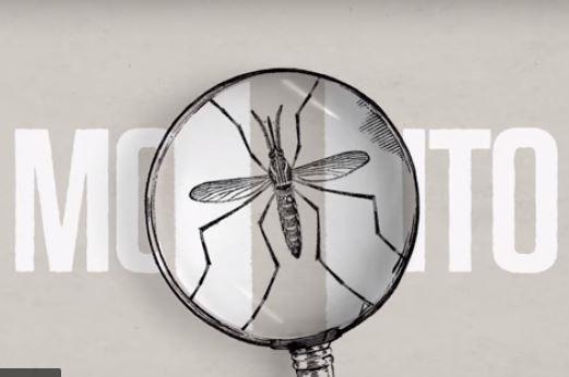 Γιατί η Google απελευθερώνει κουνούπια στην Καλιφόρνια;
