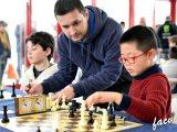 2017-beniganim-ajedrez-w01