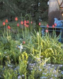 gardenjumpstart