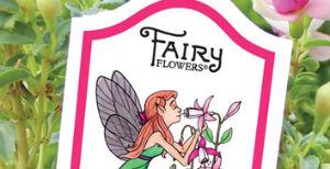 fairygardeningflowers