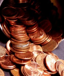 pennies gardening tips