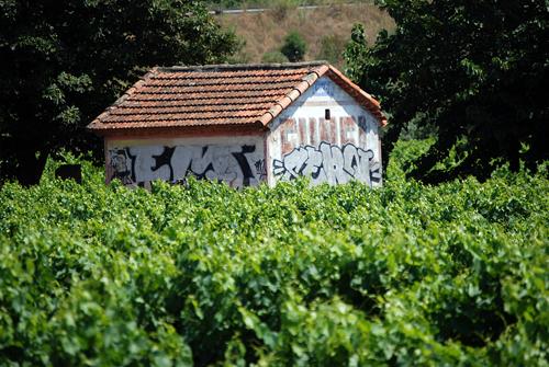 Provence Funel Shack - © Frank H. Jump