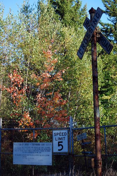 Railroad Crossings Near Northern Perimeter of Tobyhanna Army Depot - © Frank H. Jump