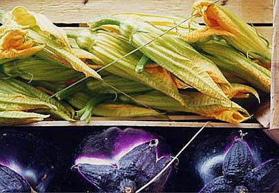 Finocchi, Fiori di Zucchini e Fagioli