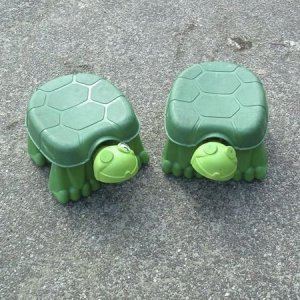 Schildpaddenrace (2 st)