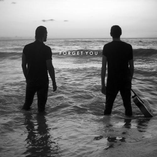 Zander Bleck - Forget You (artwork faeton music)