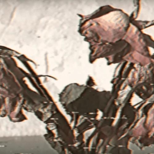 i shiver - low (artwork faeton music)