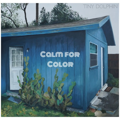 Tiny Dolphin - Calm For Color (artwork faeton music)