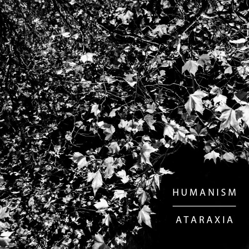 Hessian - Humanism (artwork faeton music)