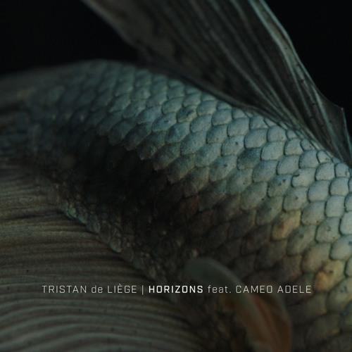 Tristan de Liège - Horizons (feat. Cameo Adele) (artwork faeton music)