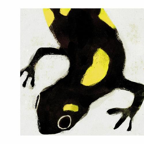 Oribu - Tempest (artwork faeton music)