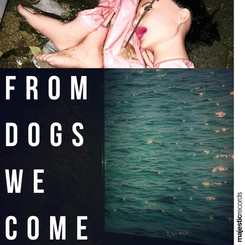 Brigade From Dogs We Come artwork faeton music