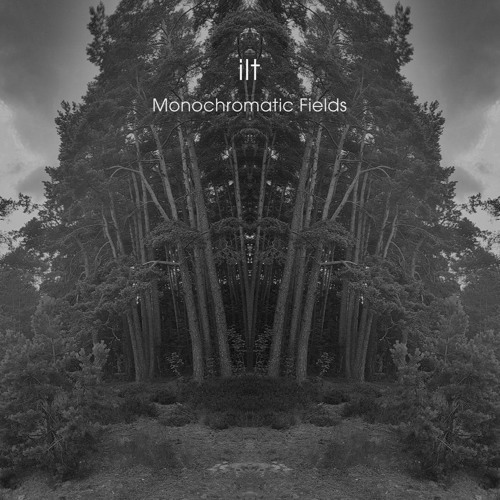 ilt - Monochromatic Fields (artwork faeton music)