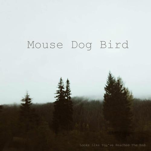 mouse dog bird ptfmk11 artwork faeton music