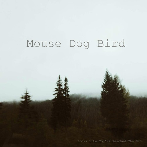 mouse dog bird ptfmk11 artwork faeton music