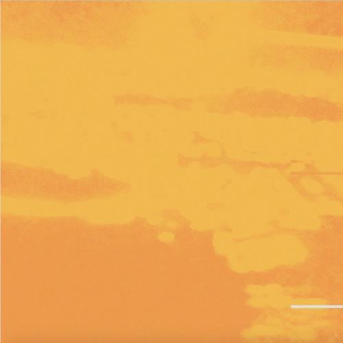 Cardnl - Colors (artwrok Faeton Music)