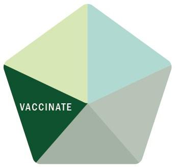 FAI Sheep - The Five Point Plan - Vaccinate