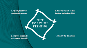 Report Calls For Investment In New Fishing Net Technology - See more at: https://www.faifarms.com/?post_type=portfolio&p=2845&preview=true#sthash.T6L7aXx6.dpuf