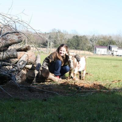 fainting-fox-farm-goats-kids