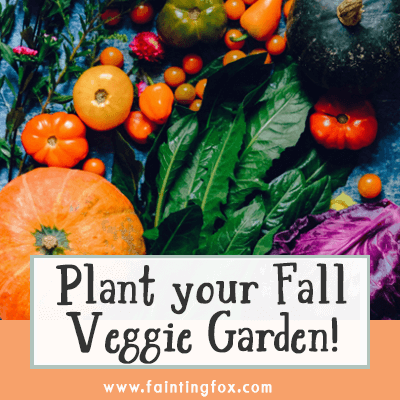 What Can You Plant in a Fall Vegetable Garden?