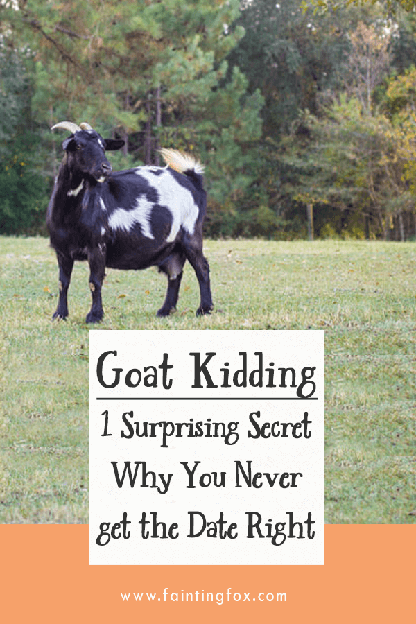 Goat Kidding - 1 Surprising Secret Why You Never get the Date Right