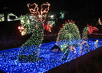 commercial christmas light shows