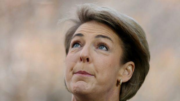 Employment Minister Michaelia Cash said she first learnt of the allegations against Mr Hadgkiss in October but proceeded ...