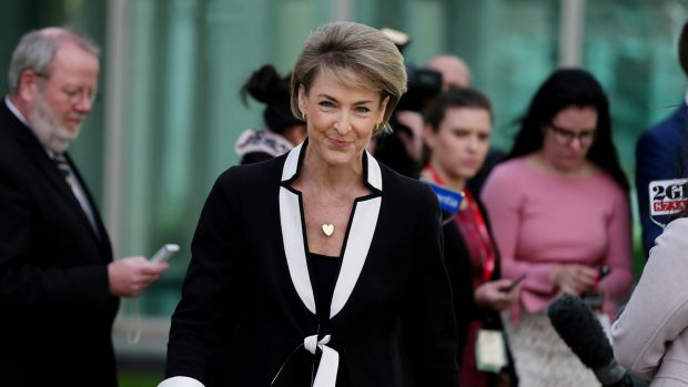 Minister for Employment and Acting Minister for Industry, Innovation and Science, Michaelia Cash.