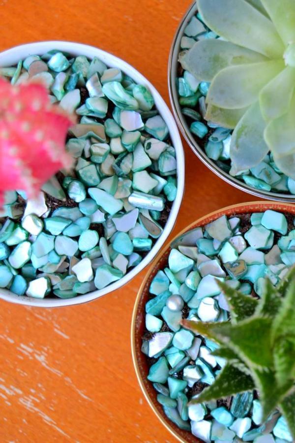 Tattooed Martha - Teacup Succulent Planters (6)