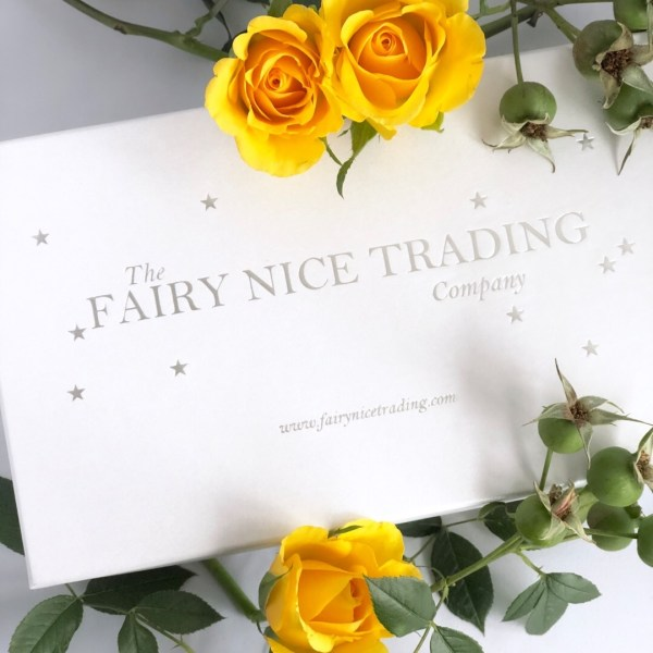 The Fairy Nice Trading Company