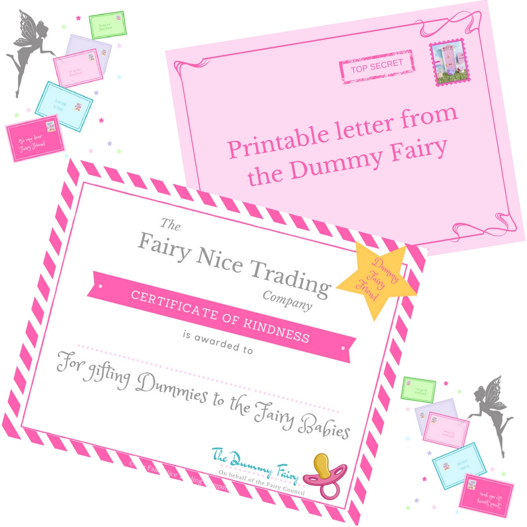 Dummy Fairy Letter Certificate The Fairy Nice Trading Company