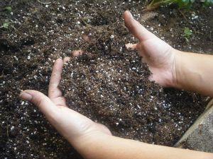 Compost is Faery Gold!