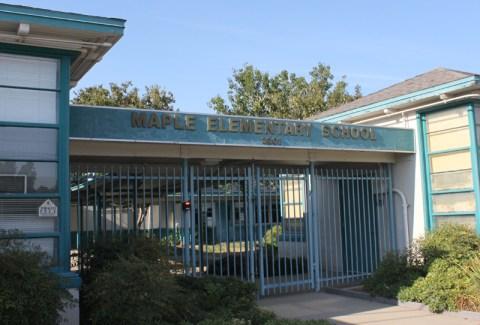 MapleSchool