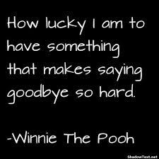 goodbye, pooh